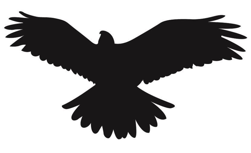 Lipdukai Paukščiai